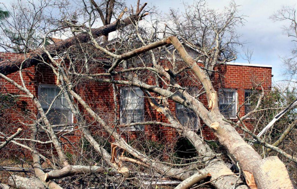 grapevine-tree-service-storm-damage-cleanup-2_orig