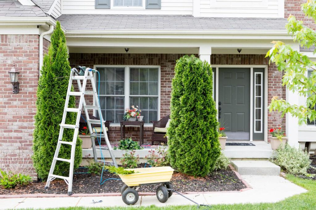 grapevine-tree-service-tree-and-brush-trimming-2_orig